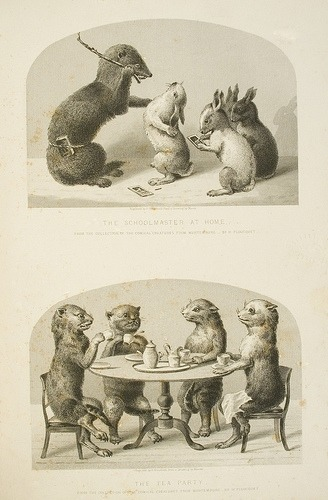 "Hey Kids — It's Taxidermy Tea Party Time!  These scenes are odd at best.  The upper picture features studious rabbits, one of which was apparently not as studious as it should have been.  The lower one inspires memories of children's tea parties with stuffed animals, except that it was orchestrated by an adult and the animals were once alive.  Please notice that the rodent on the right has its legs crossed and a napkin on its lap.  How polite! The question that just keeps coming up upon seeing these is simply ""Why?"" from page 115 of History and Description of the Crystal Palace and the Exhibition of the World's Industry in 1851, Volume 1. Printed in London by John Tallis and Co.Call No.: 606 L847 GTquarto V.1Location: The George Peabody Library"