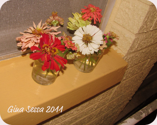 "pair of mini bouquets i made up while ""dead-headding"" my zinnias… these flowers are colorful, easy to grow… and once cut last for a while… love them! They will always have a place in my garden! Two varieties… ""Liliput"" (the smaller ones) and ""giant cactus"" (the large ones) will be posting some more shots of the garden and some macros of the flowers…."