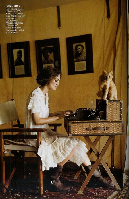 Vintage, typewriter, cat.