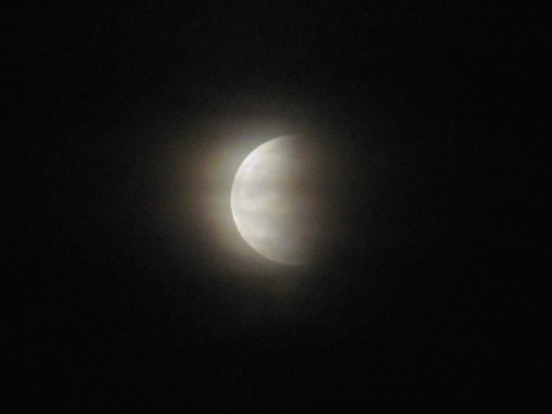 Lunar eclipse of tonight, cloudy though.