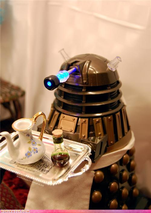 clockworktardis:  DOMESTICATE