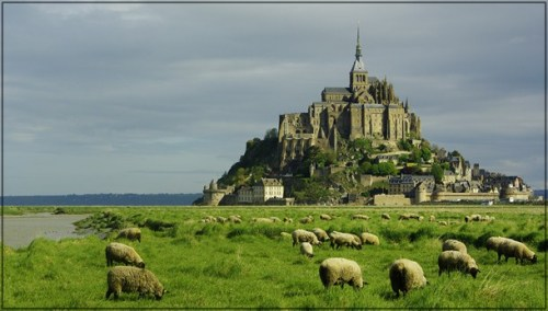 Sheep graze in the foreground of Mont St. Michel, France (via Mont St. Michel of Europe – Real Beauty of Nature | Travelet)