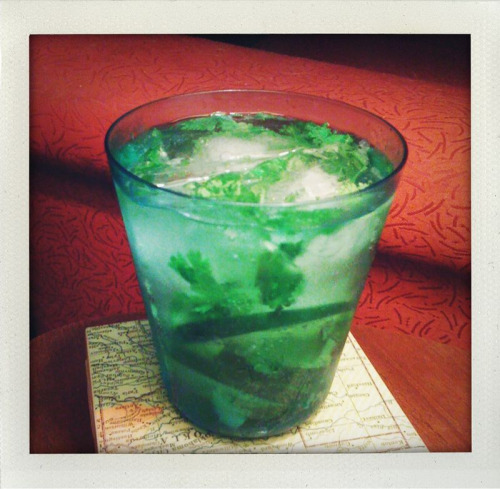 lisadyer:  sparklingpants:  A Cucumber Cooler…my official summer cocktail. Very easy and super refreshing; just muddle some cucumber slices with sprigs of cilantro, add a shot of vodka (or gin) and top with club soda. Perfection.   Sounds perfect for a hot summer day!
