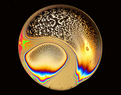 Soap Film 46 by Jane in Colour on Flickr.