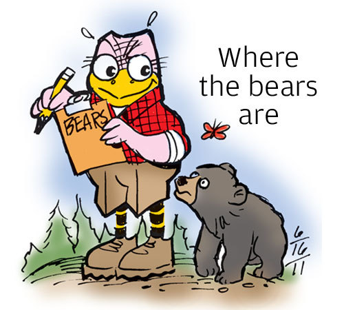 "Where the bears are • The Missouri Department of Conservation is engaged in a two-year effort to estimate the number of black bears living in the state. Sightings and anecdotal tales make it clear that the population is growing, said Jeff Beringer, Missouri's chief bear biologist, but no one knows how many are out there. ""It's like walking up to a two-acre pond and saying, 'How many bass are in there?'"" Beringer said. ""That's about where we are at estimating bears."""