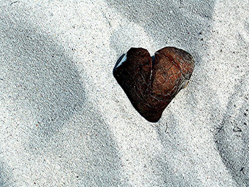 Love in unexpected places - St. Maarten -hw