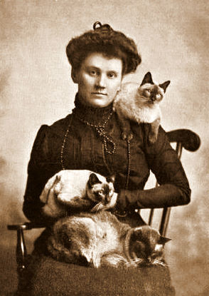 Mrs. Locke and her Siamese cats  Circa-1899