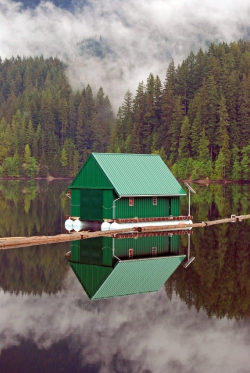 Capilano Reservoir in Vancouver B.C. (via Misty British Columbia 8X10 Photo Print by carensilvestri on Etsy)