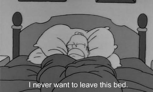 letitrainonmyparade:  I feel like this every morning :')