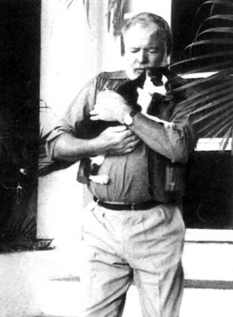 "Kitties brought out the best of Ernest ""Big Papa"" Hemingway."