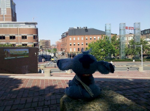 Taking a good look at Boston, wondering where the next adventure will be!