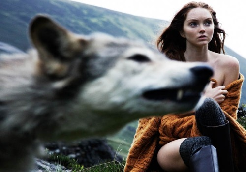"suicideblonde:  Lily Cole photographed by Olaf Wipperfürth for Above Magazine, Fall/Winter 2010  I love how the wolf is like, ""HEY, I'M IN UR FASHION PHOTOGRAAAAAAPH."""