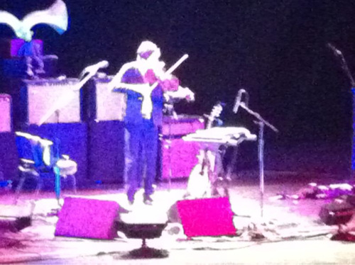 Andrew Bird was really funny last night.