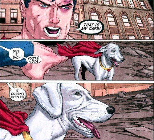 getoutoftherecat:  superman knows where it's at.