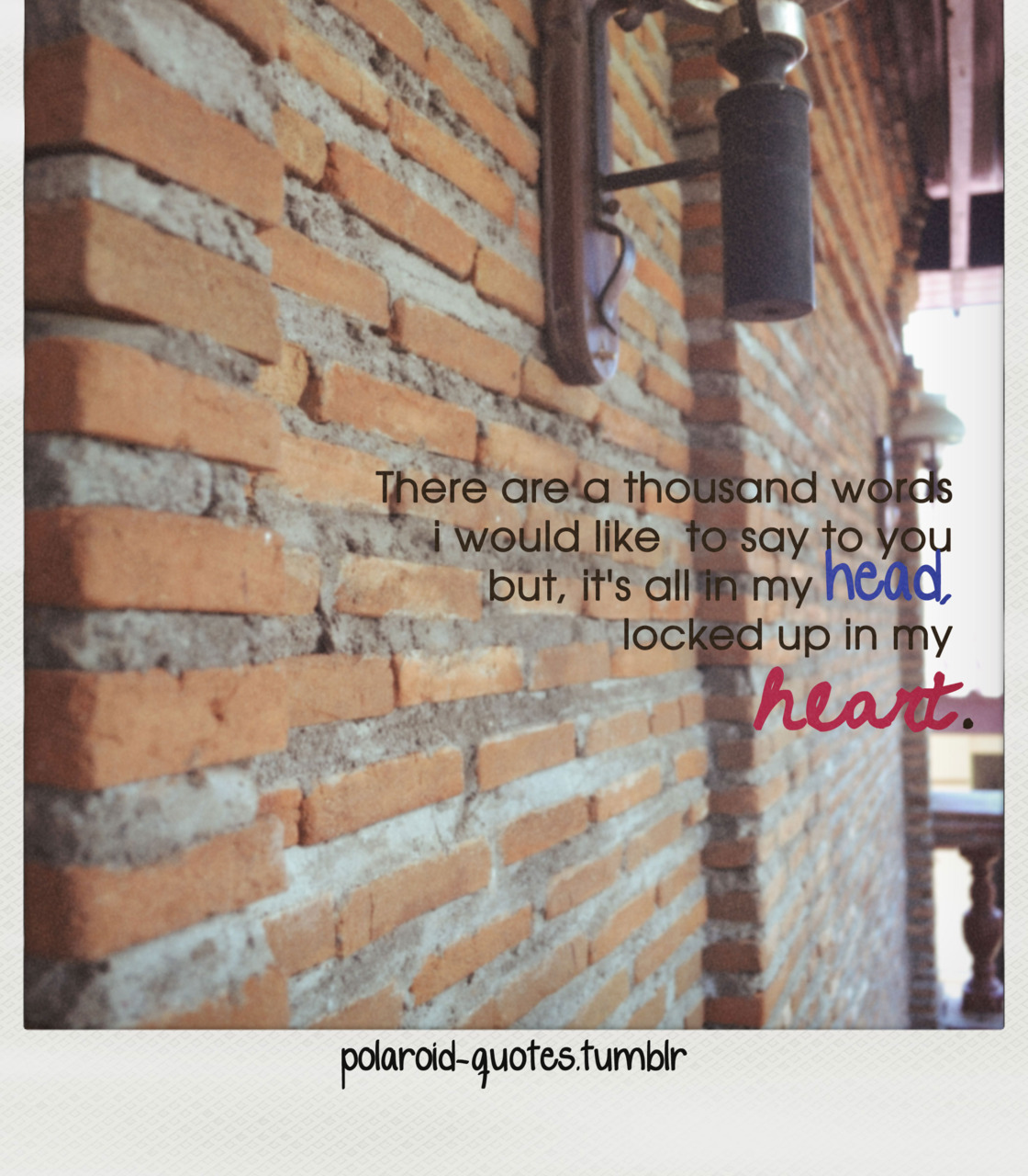 polaroid-quotes:  029
