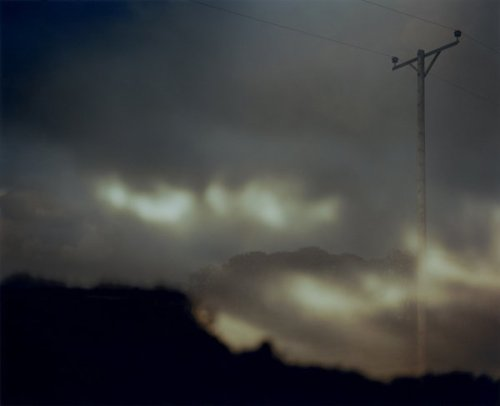 Nicholas Hughes, from Field Verse I (via inthelowlight)