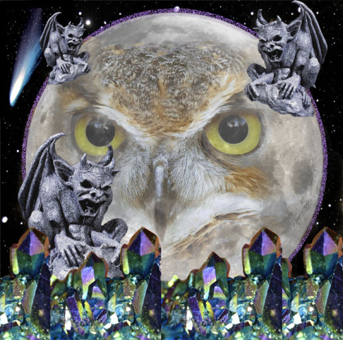 surreal moon owl collage by moi