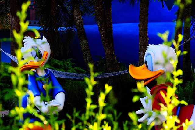 Duck Romance by Express Monorail