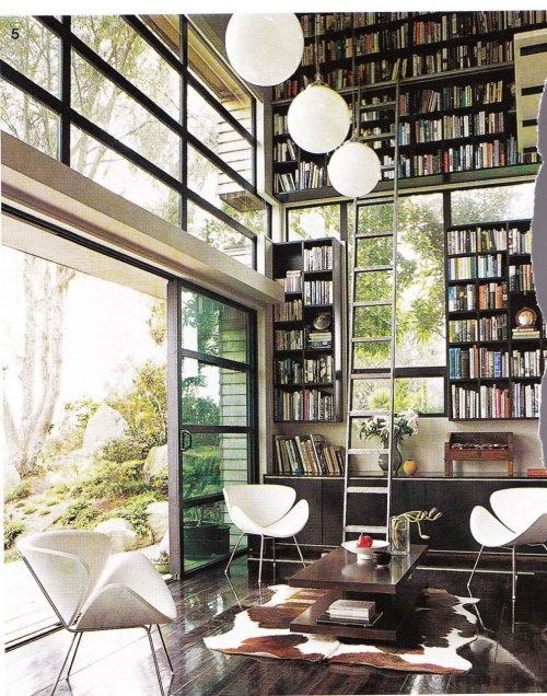 floor to ceiling home library