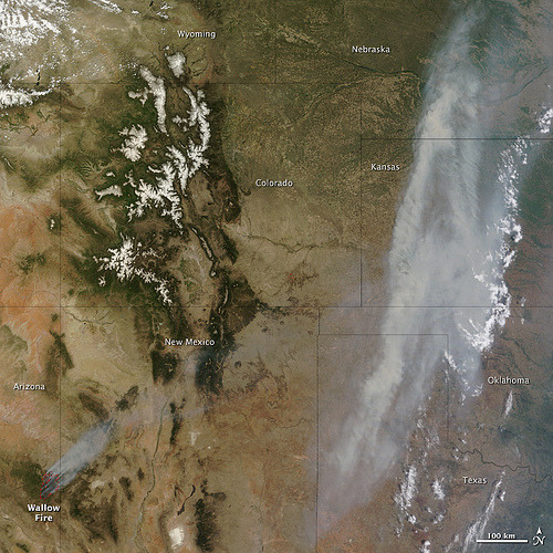 "As the Wallow wildfire charbroils more than 500,000 acres of Arizona,  Sen. John McCain (R-Ariz.) is blaming  illegal immigrants.""There is substantial evidence that some  of these fires have been caused by people who have crossed our border  illegally,"" McCain said Saturday, while declining to offer any such  evidence. Photo: CC BY NASA Goddard Photo and Video"