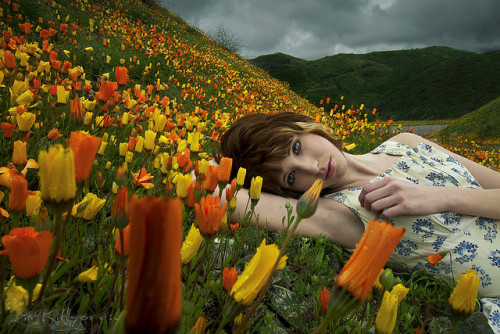 Day 65/365: Field Of Dreams [explored] by Zim Killgore on Flickr.
