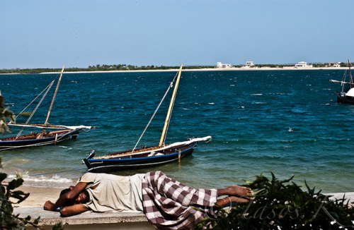 Lamu on Flickr.