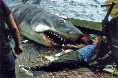 "(via Jaws: Behind-the-Scenes Photos from the Hectic Shoot - Photo Essays - TIME)  A Business Casual Lunch The death of Quint was the last scenes actor Robert Shaw filmed before heading back home to Ireland. The troubled 1974 shoot had gone on for longer than expected, recalls Susan Murphy. ""When most of us signed on, we were told shooting might cover over a bit into July, but I don't think anybody expected we'd still be shooting in September,"" she says. ""I can remember looking down at Robert, kicking and screaming and thrashing around on the deck, and thinking, 'Oh, God, please just make this movie end.' We were all so sick of it."""