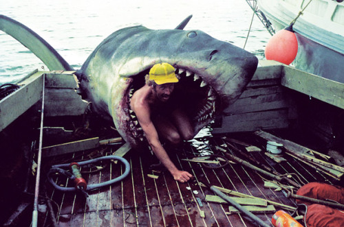 "(via Jaws: Behind-the-Scenes Photos from the Hectic Shoot - Photo Essays - TIME)  From the Belly of the Beast Special-effects operative Cal Acord sits inside Bruce (the nickname given to the troublesome mechanical sharks; it was the first name of Spielberg's lawyer at the time) on the rear of the Orca. ""Part of the scene where Quint is eaten included close-ups of the shark on the back of the boat, just biting and snapping,"" says Chris Crawford, the ship's actual captain. ""On what was probably the last take of the day, the shark's jaws clamped down around the remnants of the breakaway transom, and as it slid off the back, it pulled the boat farther into the water than it was meant to go. They had three cameras running to cover all the angles and every one of them went into the drink — along with all the film they had shot that day. You could just see the despondency on everyone's face."" Luckily, Panavision in New York was able to save the footage."