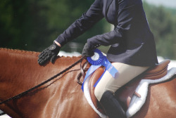 snapshot-equestrian:  winning isn't everything, but the will to win is everything.