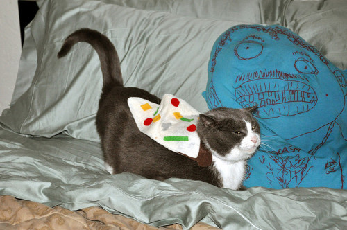 darceeee:   Pizza cats - 2010