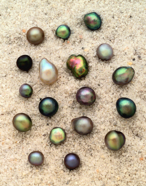Pearls are the most valuable of all organic gemstones, and have been prized for 6000 years. Pearls chemical makeup varies by region and environmental factors, but the basic formula is CaCO3. Pearls form through irritants entering specific species of mollusks (oysters, clams, muscles, etc), while the irritant can be a grain of sand or a parasite, the process is the same for pearls. The irritant is coated in CaCO3(mother of pearl) to make it less irritating to the mollusk. Pearls can range in many colours and shapes, and value depends on their shape and colour.