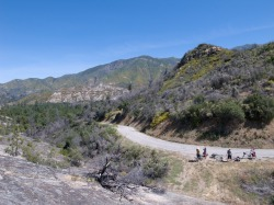Photo by Erik Jensen, bikenoir.blogspot.com This past weekend I headed down to King City with a fantastic trio of friends for the Ventana Wilderness.  The Ventana, Big Sur's rugged and warm backcountry, is easily accessible from the Bay by training to San Jose either via Amtrak or Caltrain and then taking the Amtrak thruway bus to King City with a bicycle.  We rode the car-free, rugged Indians-Arroyo Seco Road for a loop ride that took in Fort Hunter Liggett's unending fields of oak and army operations as well as the cold waters of the Arroyo Seco gorge.  Photos of day one and day two, with day three to come, by erik jensen of cosmic country.