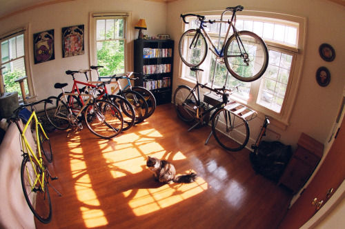 natethegreat1001:  Some day my house will look like this