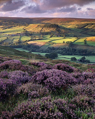 Rosedale, North Yorkshire, England (by Ross J Brown)