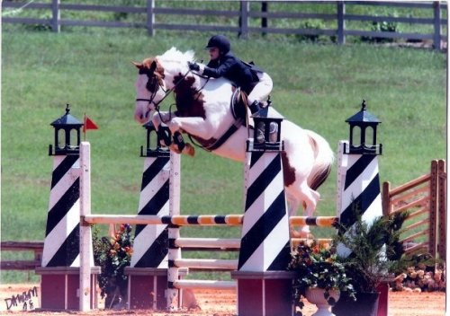 notoriouslychelsea:  equestrian-perfection:  equinization:  ch3vaux:  umm, you're not jumping high enough  yeah, put some more effort into it!  This is in Tyler! I know this girl I love her horse Her horse actually died…  Her horse died? From jumping this fence? Is he air bound for heaven? Plz explain :(