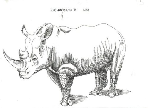 My sequel to the Durer piece.Rhinoceron II