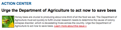 NRDC ACTION CENTER: Bees are a critical agricultural resource that help produce $15 billion worth of crops in the United States each year. The recent unexplained mass disappearance of honey bees, called colony collapse disorder, poses a significant threat to honey bees, beekeepers, farmers and our food supply. Most bee experts believe bees could be falling sick due to a combination of factors, including pesticide exposure, invasive parasitic mites, an inadequate food supply and a new virus that targets bees' immune systems. Last year Congress recognized colony collapse disorder as a threat and granted the Department of Agriculture emergency funds to study the problem. In addition, the department receives $20 million each year for honey bee research, pest and pathogen surveillance, and other bee-related programs. But to date, the agency has been unable to fully account for how these funds are being used or show any significant results from its work. The Agriculture Department should be held accountable for a clear and complete annual report of its progress on all of its duties concerning colony collapse disorder. Moreover, the department should determine what resources are needed to fully address the problem and inform Congress of these needs as soon as possible. What to do:Urge the Department of Agriculture to fulfill its commitment to fight colony collapse disorder.