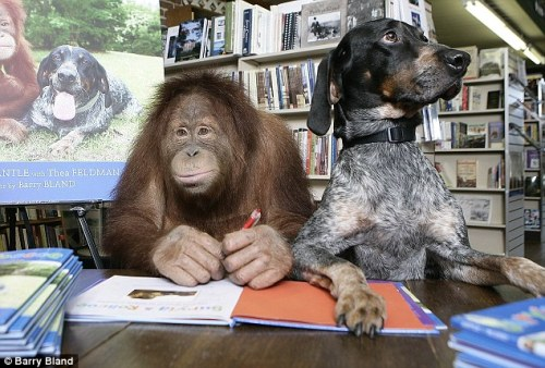Best friends Suryia (left) and Roscoe at their book-signing in South Carolina. Um. Photo by Barry Bland