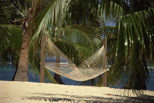 This hammock in the Bahamas looks to be the perfect spot for a lazy afternoon nap