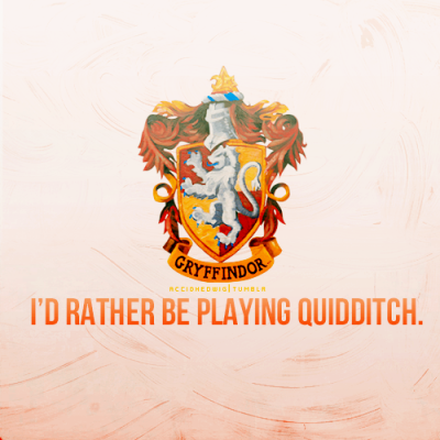 House Pride  Beater for life! (which out of the context of HP and Quidditch sounds awful!)