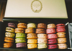 Box of macarons by Ladurée. Photo by The Integer Club