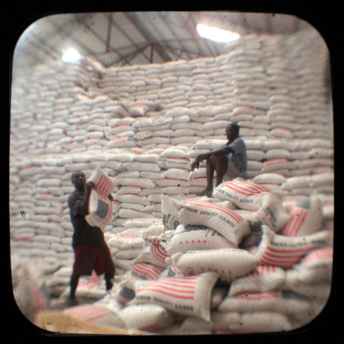 Rice in the largest wholesale warehouse in Port-au-Prince