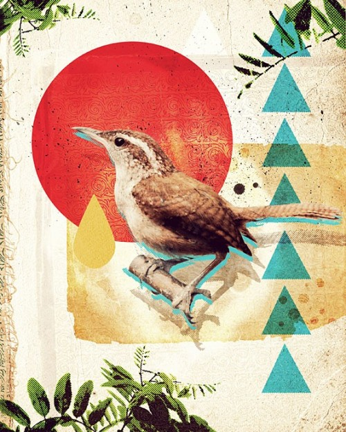 Bird Collage I by Marco Suarez