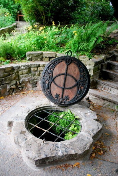 penny-dreadful:  Chalice Well. Glastonbury, England. Photo by me.