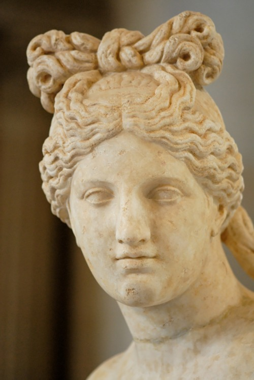Head of a Capitoline Venus displaying an ancient Greek or Roman hairstyle, 2nd century AD copy of a Greek original, the Louvre Back: