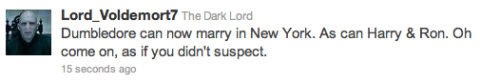 lgbtlaughs:  [tweet from @Lord_Voldemort7: Dumbledore can now marry in New York. As can Harry & Ron. On come on, as if you didn't suspect.]