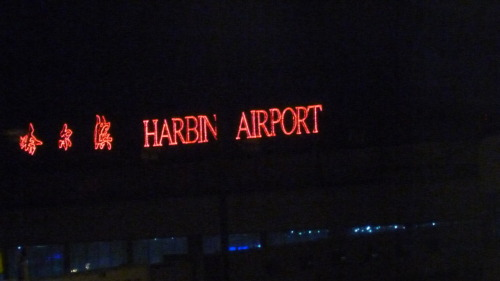 This is Harbin's Airport.  My flight went here before Beijing because of a thuderstorm.  这是哈尔滨的飞机场。因为北京有雷阵雨,所以我以前去哈尔滨。