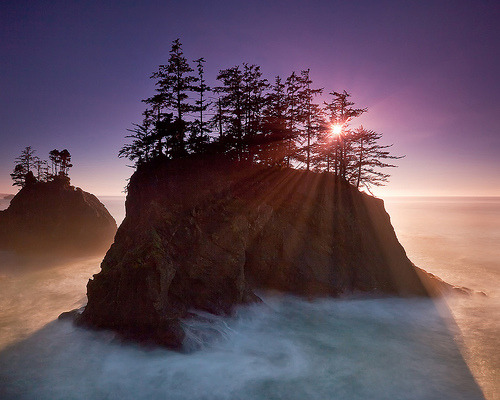 skeletales:  Southern Oregon Coast (by Jesse Estes)