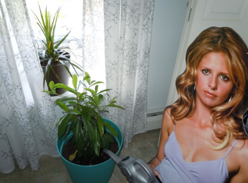 Buffy has a surprisingly green thumb. You know, when it's not covered in demon guts.