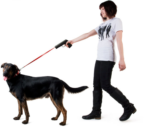 A dog leash for people who don't enjoy walking their dogs